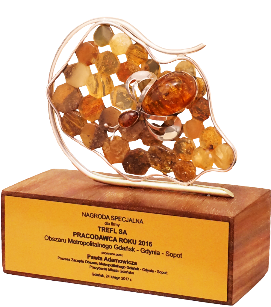 Nagroda Specjalna Obszaru Metropolitalnego
